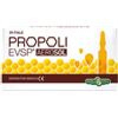 PROPOLI EVSP AEROSOL 20FX2ML EBV