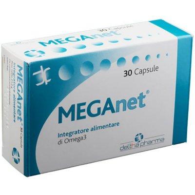 MEGANET INTEG 30CPS 21G