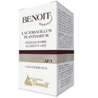 BENOIT AF3 LACTOBACILLUS PLANTHA