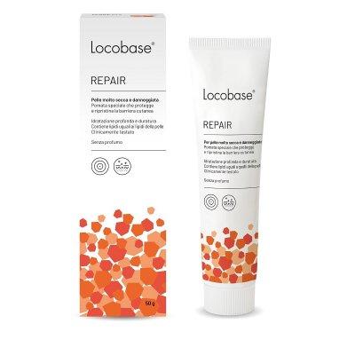 LOCOBASE-REPAIR 100G