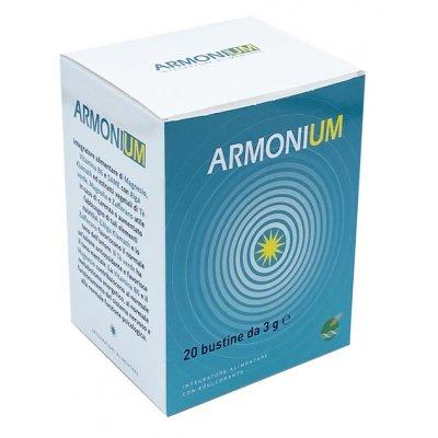 ARMONIUM 20BUSTINE 3G