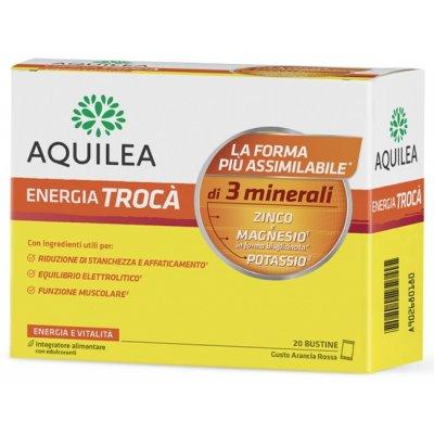 TROCA INTEG ARANC/ROS 20X6G